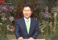 '부활에 대한 반응' 신촌교회(조동천 목사)